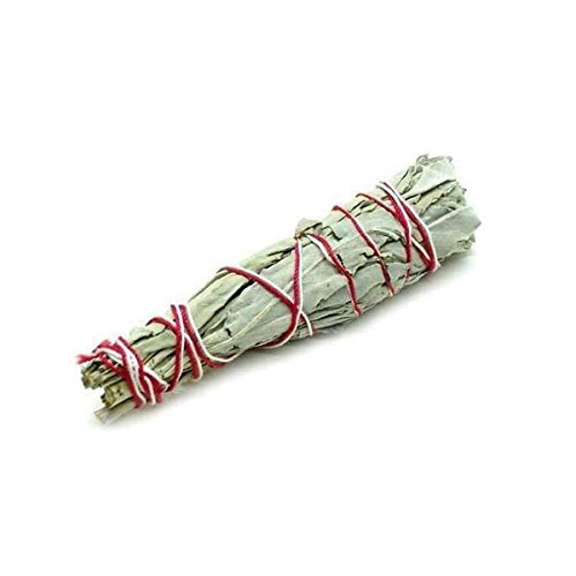 交響曲女将救出セージバンドル – ホワイトセージSmudge Stick使用のクレンジングとPurifyingエネルギー、瞑想、自然として、消臭 – 6 Inches Long