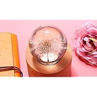 royarebarクリエイティブベビーおもちゃ音楽ボックスロマンチックタンポポSpecimenクリスタルボール音楽ボックス装飾バレンタインの日ギフト
