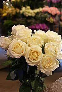 箱買い 一級品のバラ(白系) 誕生日・記念日・卒業・送別・各種お祝い