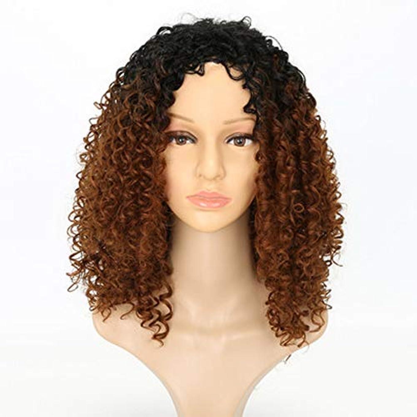 池改善有名女性のための色のかつら長いウェーブのかかった髪、高密度温度合成かつら女性のグルーレスウェーブのかかったコスプレヘアウィッグ、女性のための耐熱繊維の髪のかつら、茶色のウィッグ18インチ