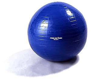 ALINCO(アルインコ) エクササイズボール EX-017 65cm