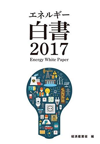 2017年版 エネルギー白書