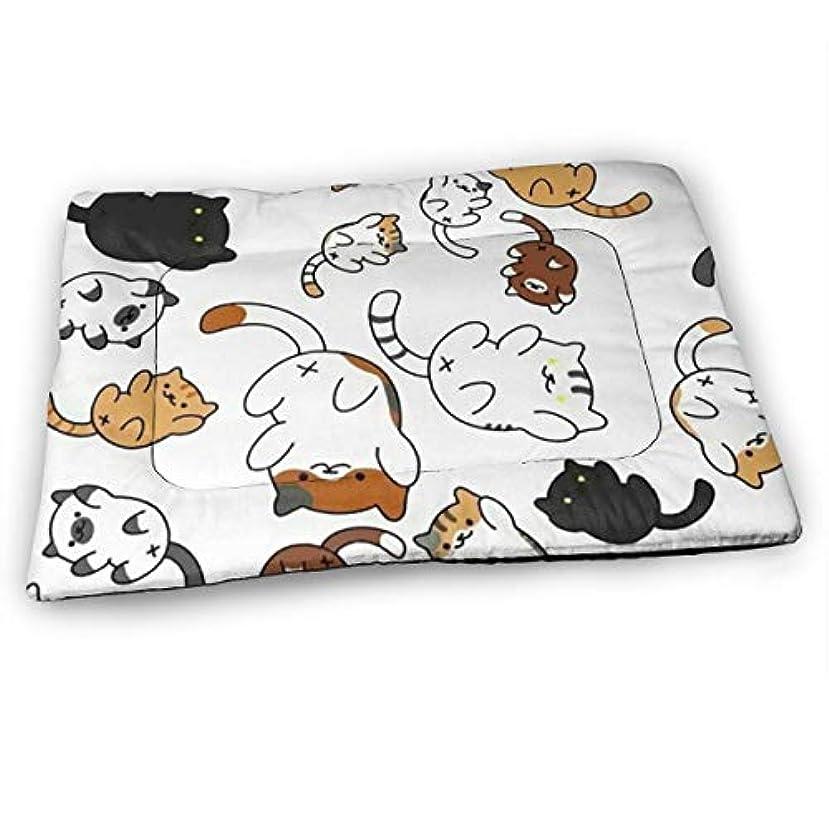 交換戸惑う掘るペットベッド ペットマット かわいい 子猫 ペットカーペット ペットシーツ ペットクッション 中型 犬 猫 ベッド 防水 速乾 消臭 滑り止め ふわふわ 暖かい ペットハウス 清掃しやすい 睡眠マット 通年使える