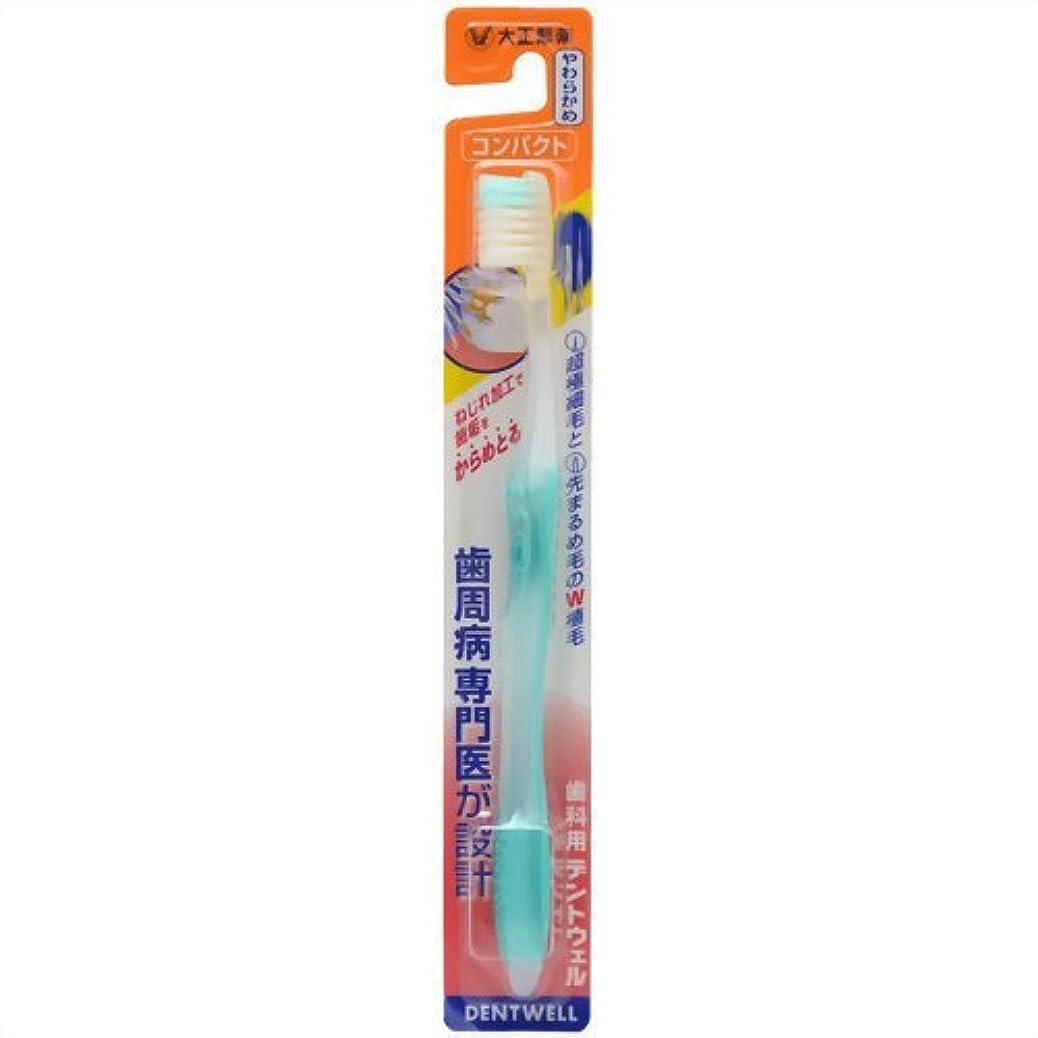 広い測定可能昼間大正製薬デントウェル 歯科用 コンパクト やわらかめ