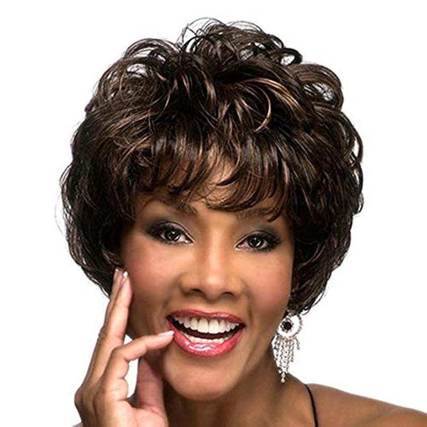 外部粘性のびっくりした女性の12インチのための黒人女性の毎日のパーティーウィッグ用ショートナチュラル人工毛かつらレース高温耐熱性繊維毛ウィッグ