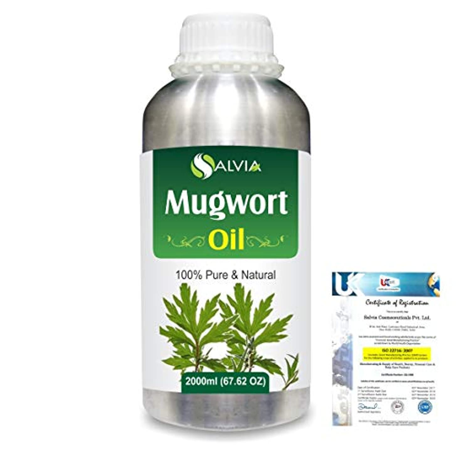 インゲン呪われたブロックMugwort (Artemisia vulgaris) 100% Natural Pure Essential Oil 2000ml/67 fl.oz.
