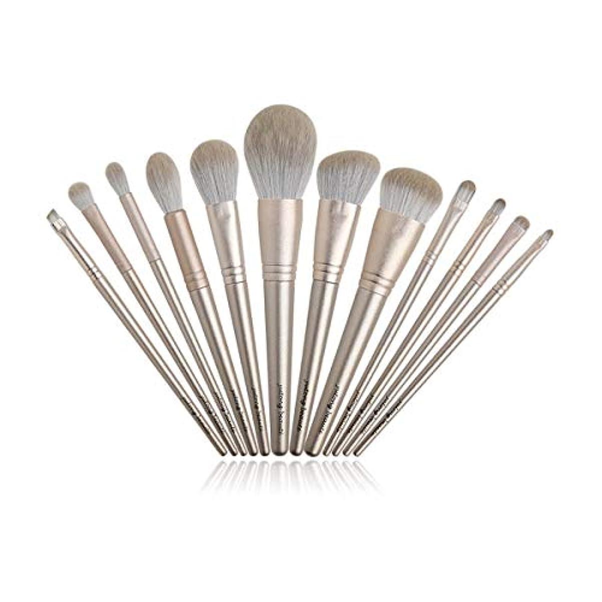アロング髄正当化するTUOFL メイクブラシ美容ツールベルト保護ネットの設定ファイバー髪のセクションを設定し、12点セット (Color : Gold)