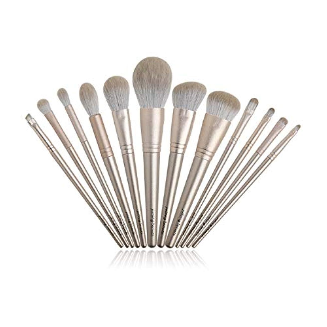 救出ブラジャーリンクXIAOCHAOSD メイクブラシ美容ツールベルト保護ネットの設定ファイバー髪のセクションを設定し、12点セット (Color : Gold)