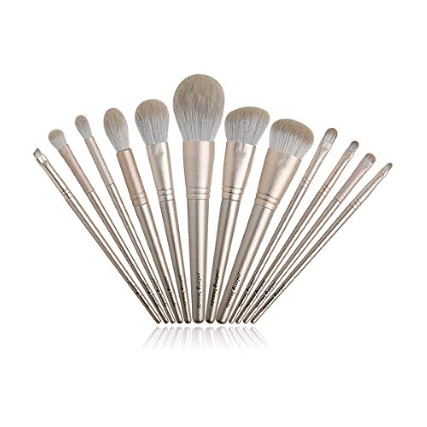 燃やすタクト変なXIAOCHAOSD メイクブラシ美容ツールベルト保護ネットの設定ファイバー髪のセクションを設定し、12点セット (Color : Gold)