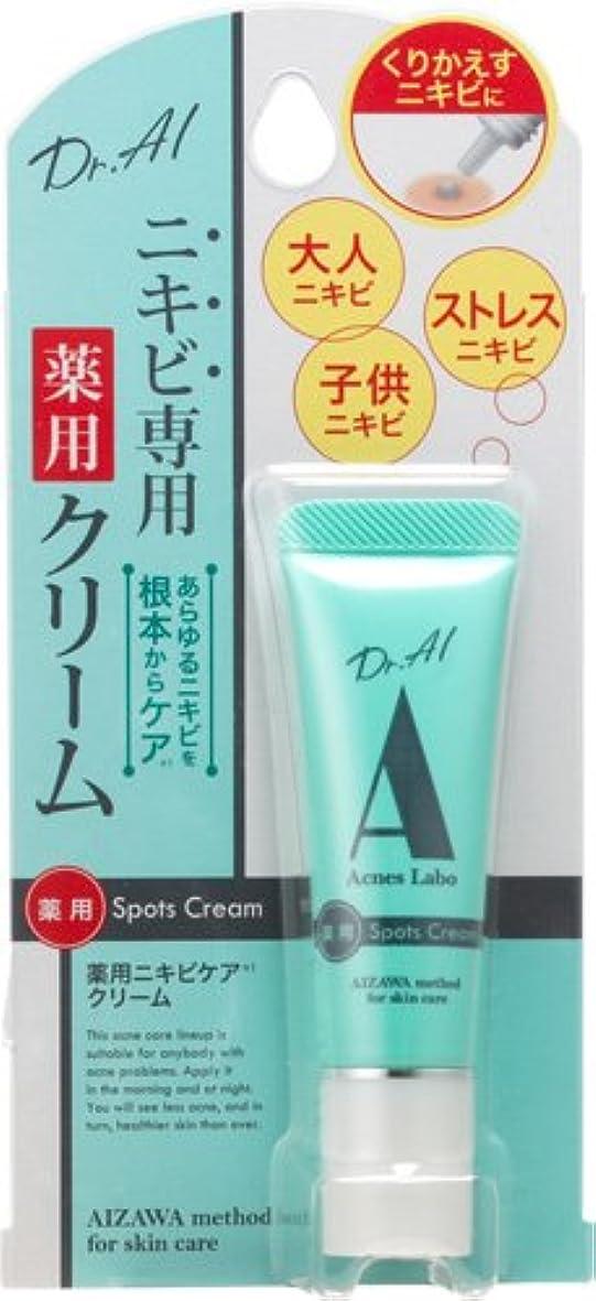 快い過度に手首アクネスラボ ニキビ専用 薬用スポッツクリーム 10g 【医薬部外品】