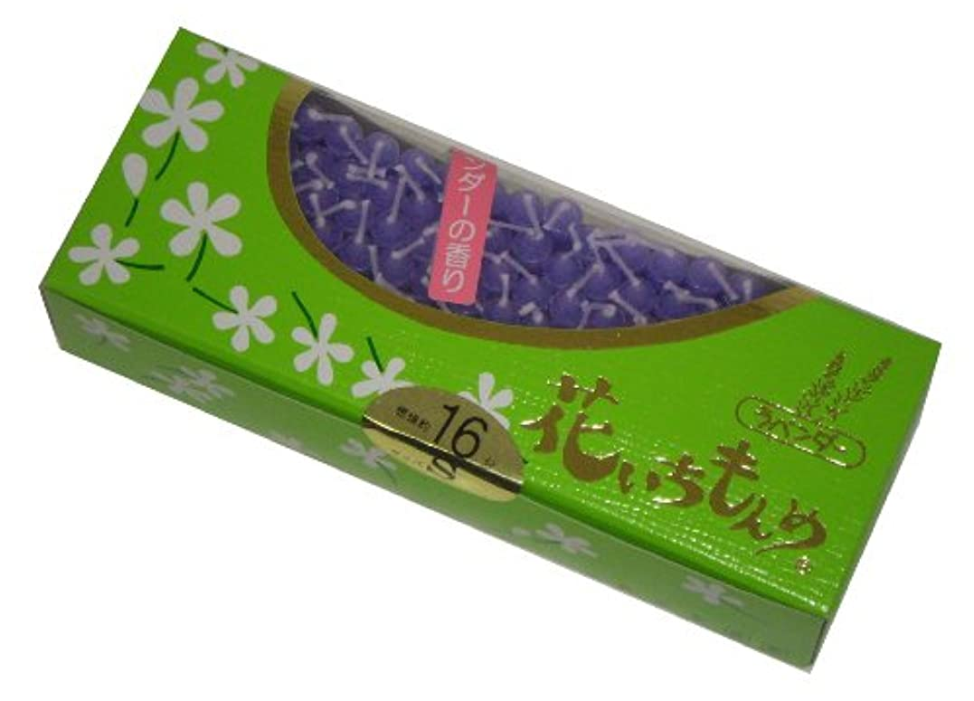 教えて発明する派生する佐藤油脂のローソク 花いちもんめ ラベンダー 約160本 16分