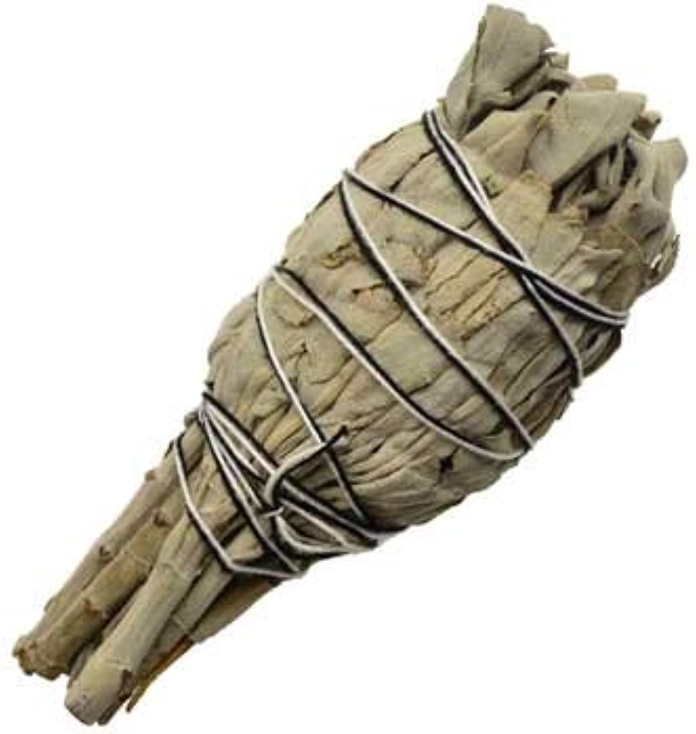 呼び起こす爬虫類遺跡Clear Yourスペースカリフォルニアホワイトセージお香Smudge Stick 4