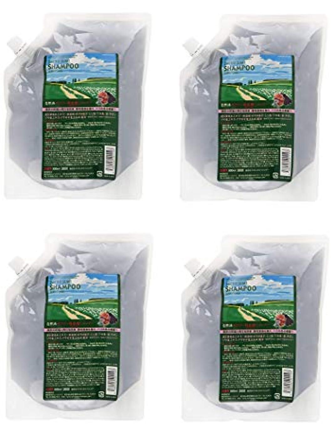 暖かさポンプ準拠【4個セット】サニープレイス ザクロ精炭酸シャンプー 800ml レフィル 詰替え用