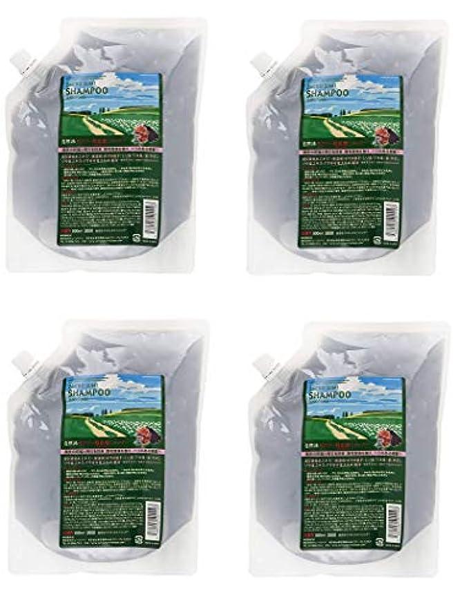 未亡人空白白鳥【4個セット】サニープレイス ザクロ精炭酸シャンプー 800ml レフィル 詰替え用