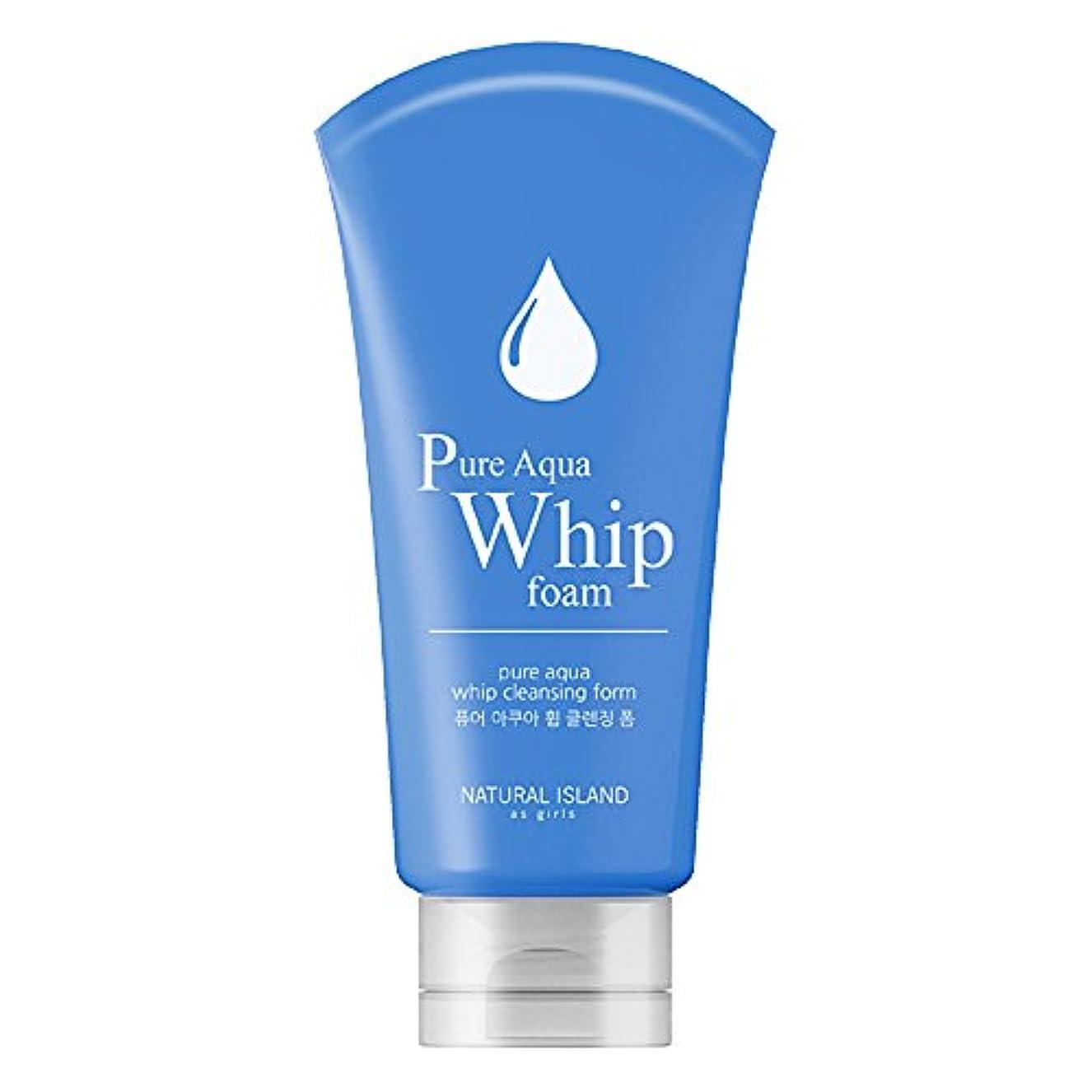 ビットセッティング欠伸Natural Island Pure Aqua Whip Cleansing Foam 120ml/ナチュラルアイランドピュアアクアホイップクレンジングフォーム120ml [並行輸入品]