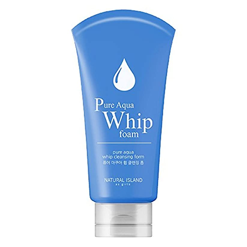 素晴らしいです大宇宙懇願するNatural Island Pure Aqua Whip Cleansing Foam 120ml/ナチュラルアイランドピュアアクアホイップクレンジングフォーム120ml [並行輸入品]