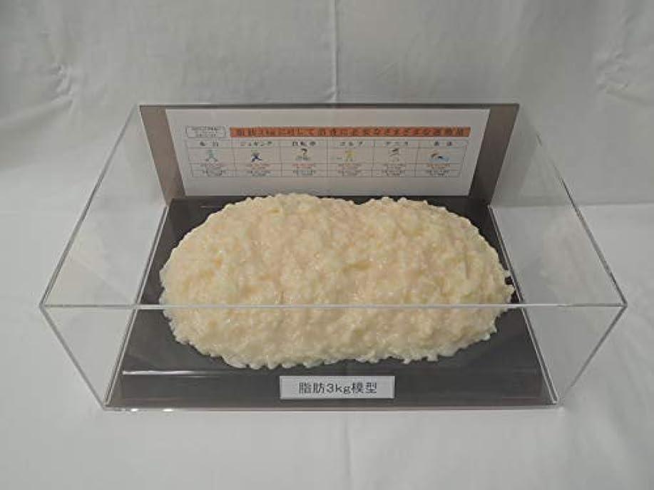 置くためにパック有効なピカリング脂肪模型 フィギアケース入 3kg ダイエット 健康 肥満 トレーニング フードモデル 食品サンプル