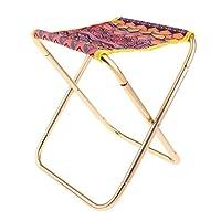 Fenteer ポータブル キャンプ 折りたたみスツール 折りたたみ椅子 ピクニックシート 釣りチェア 全3色 - マルチカラー