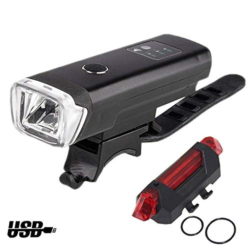 特別なスポーツをする白鳥自転車ライトセット USB充電式、新しい 自転車ヘッドライトテールライト 防水 LED サイクリング、自転車ライト
