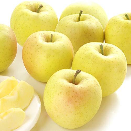 国華園 青森産 木箱 星の金貨 約20kg1箱 りんご
