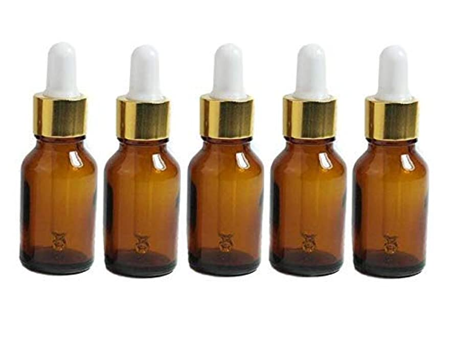 保守可能敵意鉄道駅6PCS 15ml Mini Amber Glass Via With Pipette Dropper Bottles Aromatherapy Essential Oil Refillable Dropper Bottles...