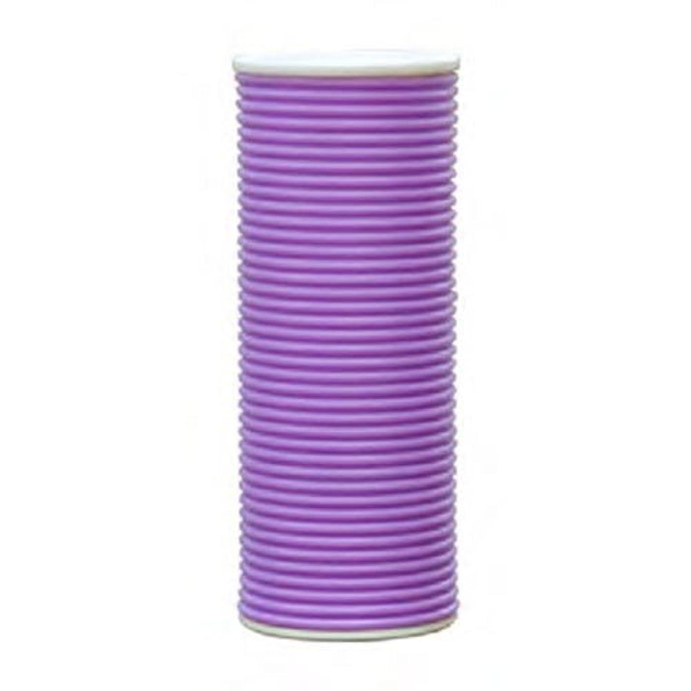 きょうだい使役鳴り響くスプリング加湿器 CLV-271-PU