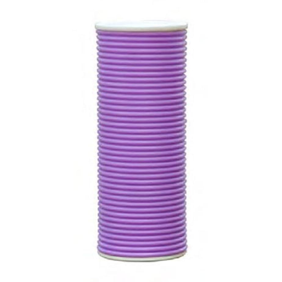 規則性はげ入場料スプリング加湿器 CLV-271-PU