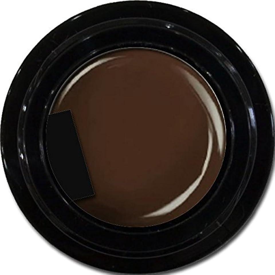 仲良し印象名誉カラージェル enchant color gel M106 DarkBrown 3g/ マットカラージェル M106 ダークブラウン 3グラム