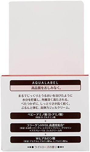 アクアレーベル スペシャルジェルクリーム (モイスト) 高保湿タイプオールインワン 90g