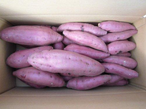 鹿児島県産 西山さんちの酵素紅はるか ファミリーパック さつま芋5kg