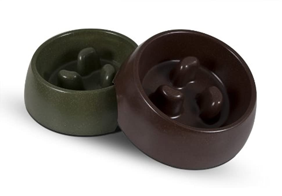 Petmate 23356 Eco Slow Pet Feeding Bowl, Large, Earth Brown/Forrest Green by Petmate