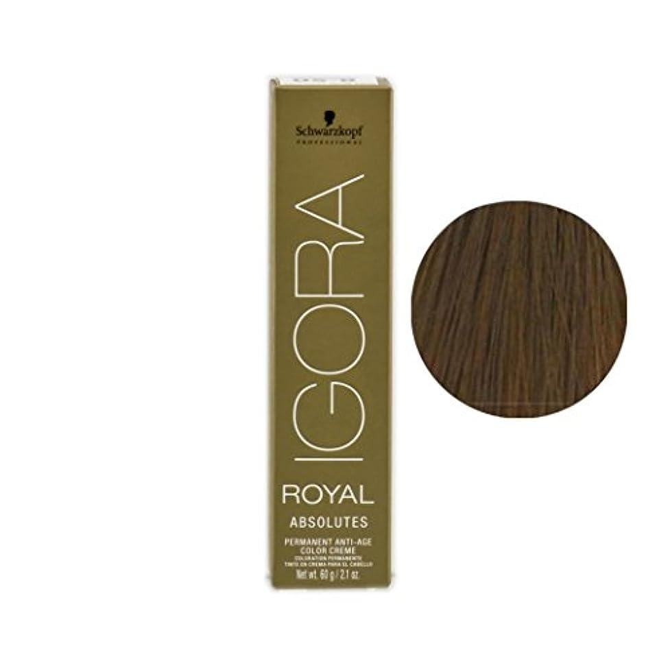 葉を拾う手がかりインレイSchwarzkopf プロフェッショナルIGORAロイヤルアブソリュート髪の色、 9-56、エクストラライトブロンドゴールドチョコレート