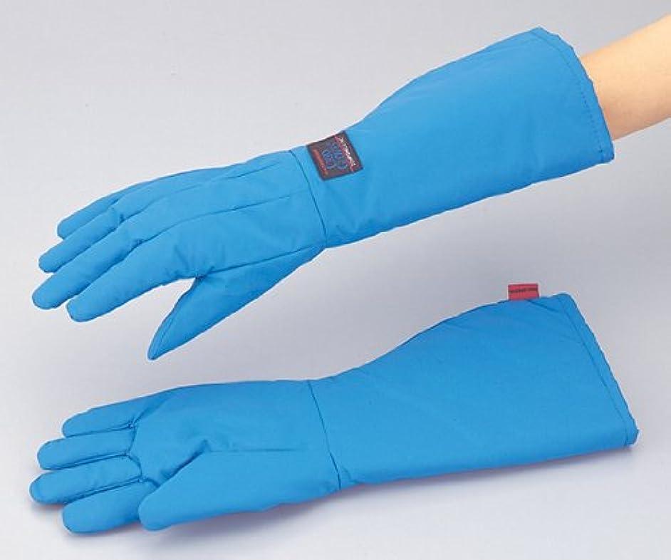 ヒント実質的にブラザーアイシス1-7970-01耐寒用手袋TS-EBSWPS