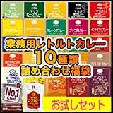 業務用レトルトカレー福袋 30種類の中から10種類詰め合わせセット