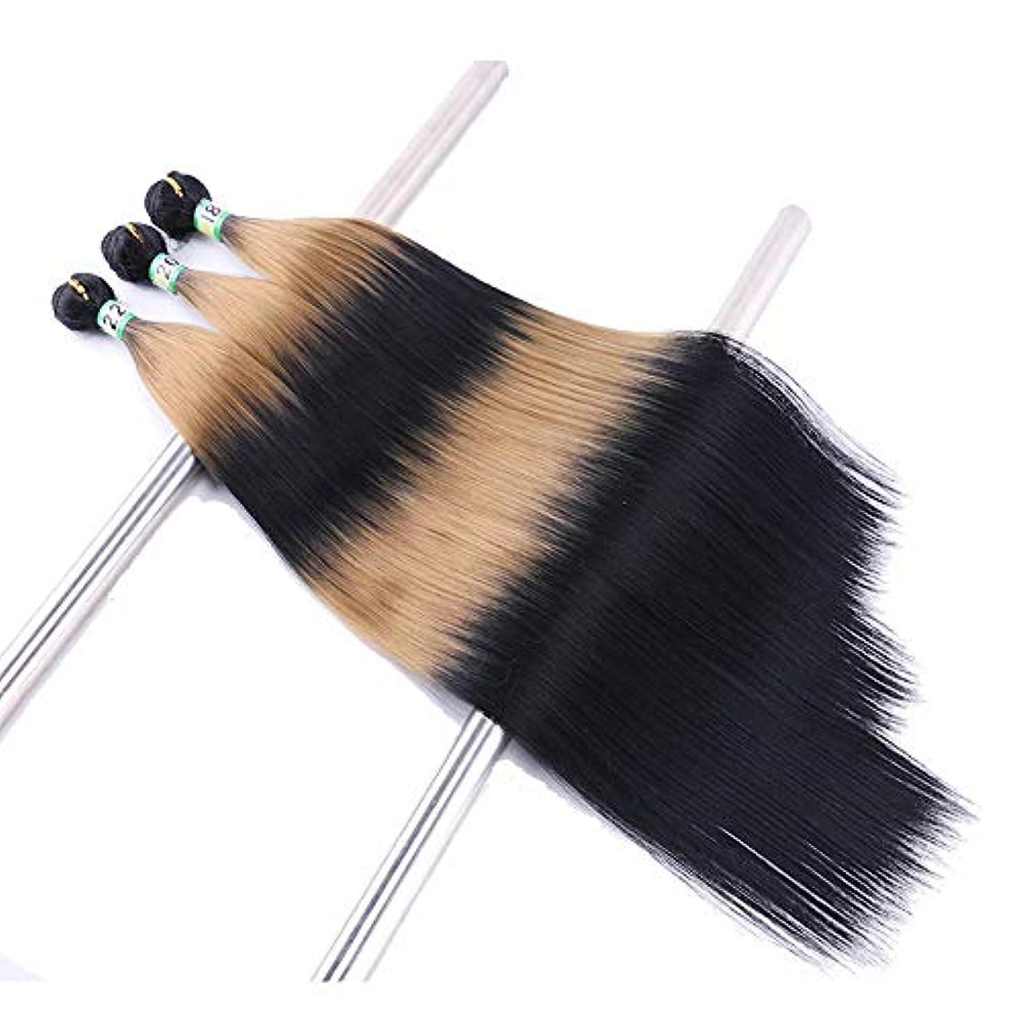 スロベニア灌漑アリーナHOHYLLYA 3バンドルシルクストレートヘアエクステンション - TTI / 27黒と茶色のツートンカラーの人工毛髪のかつらロールウィッグロールプレイングウィッグロングとショートの女性自然 (色 : ブラウン, サイズ...