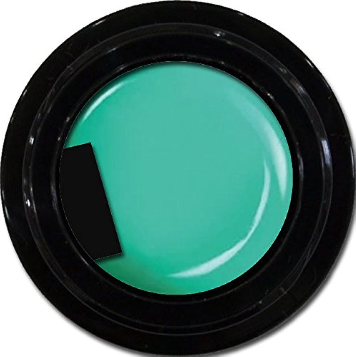 対話偏心アルミニウムカラージェル enchant color gel M712 MarrakechGreen3g/ マットカラージェル M712マラケッシュグリーン 3グラム