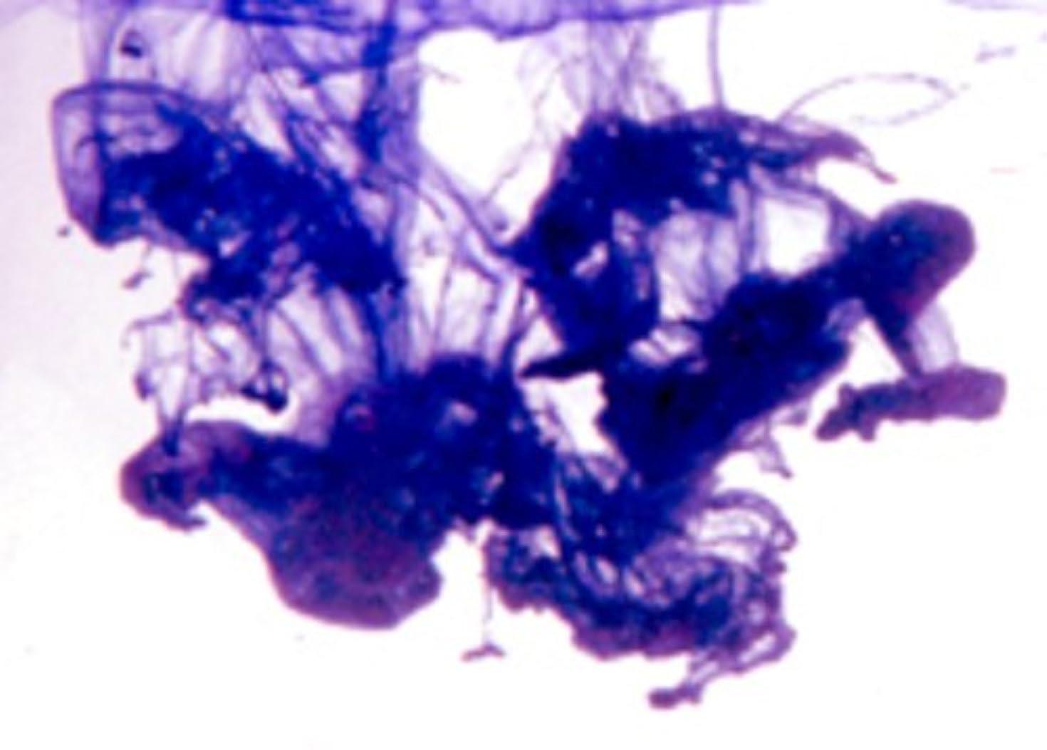 形式前方へ石のRoyal Purple Soap Dye 10ml - Highly Concentrated