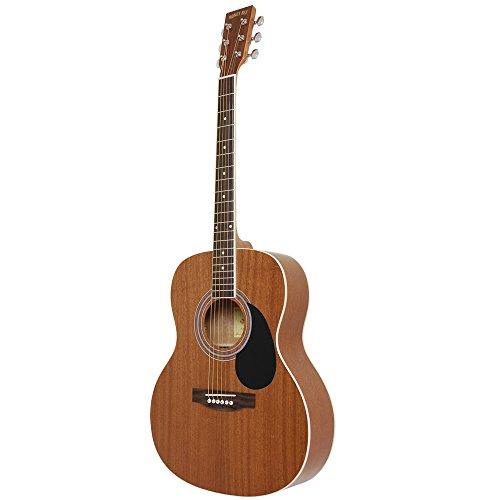 HONEY BEE ハニービー アコースティックギター フォークギタータイプ F-15/MH
