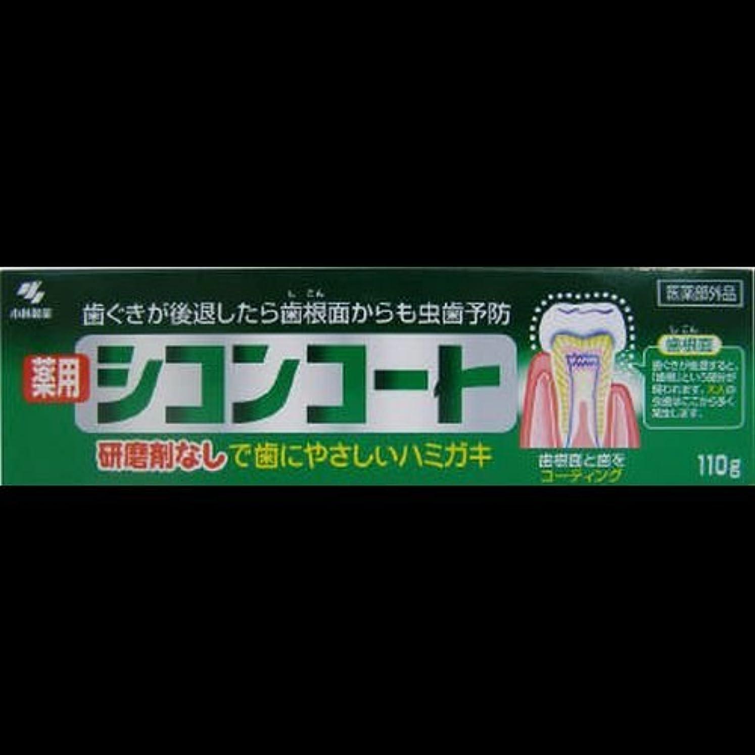 お茶シェードお客様シコンコート 110G ×2セット