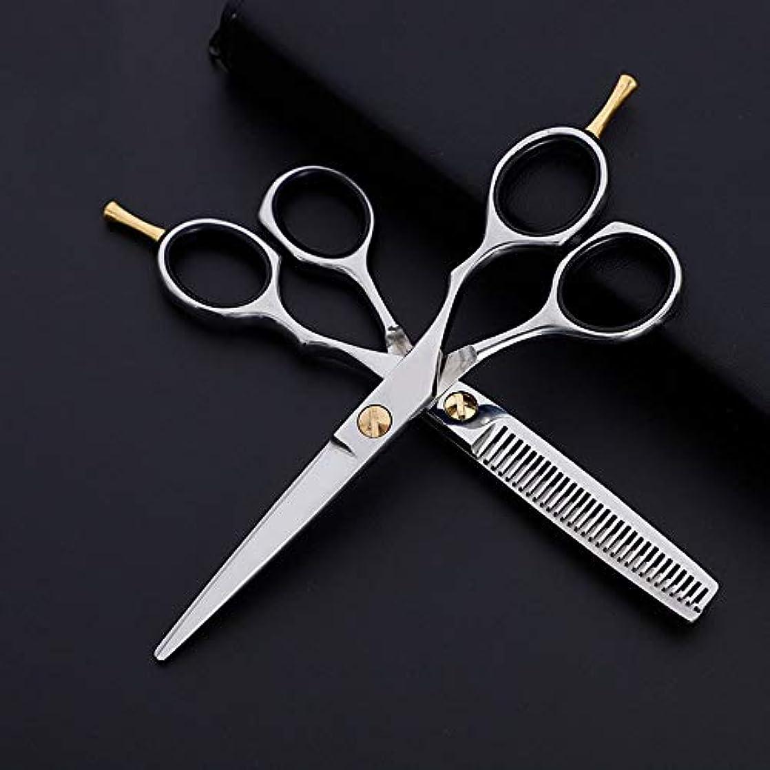 ベアリングめまいが動力学6インチプロフェッショナル理髪セット、フラット+歯はさみクラシック斜めハンドル理髪はさみ モデリングツール (色 : Silver)