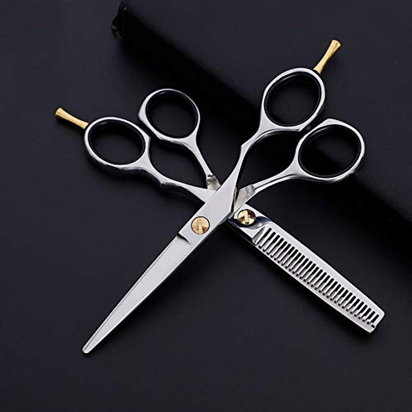遠征フェンス広がりWASAIO サロンレイザーエッジ髪のクリッピングせん断美容専門の理髪セットプレーン+歯はさみクラシック6インチハンドル (色 : Silver)
