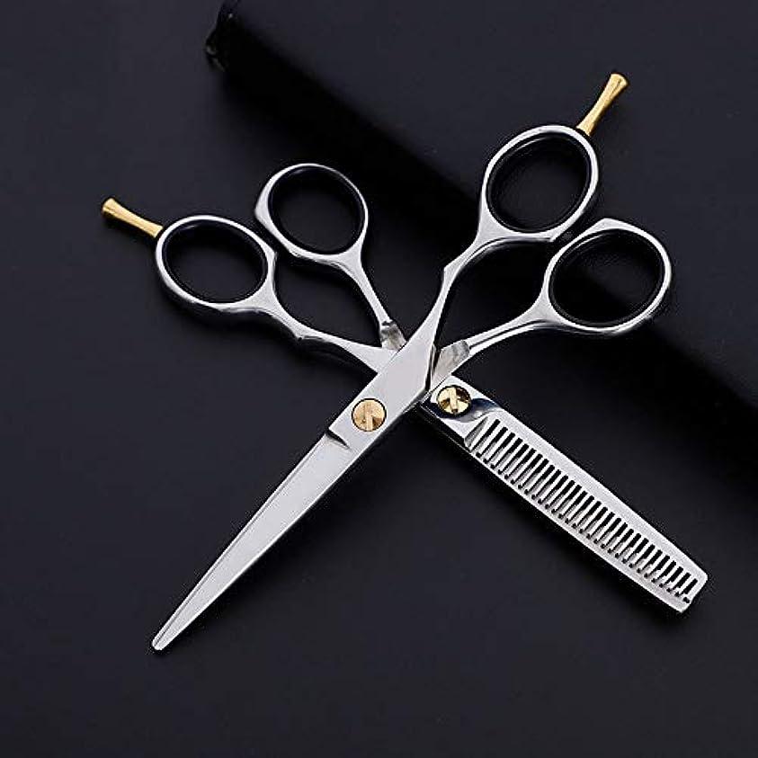 救い値する成り立つWASAIO サロンレイザーエッジ髪のクリッピングせん断美容専門の理髪セットプレーン+歯はさみクラシック6インチハンドル (色 : Silver)