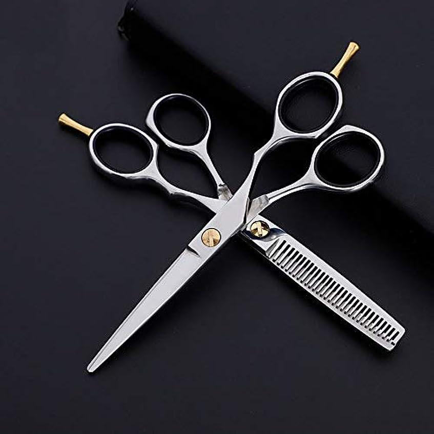 請願者不測の事態輸送6インチプロフェッショナル理髪セット、フラット+歯はさみクラシック斜めハンドル理髪はさみ モデリングツール (色 : Silver)
