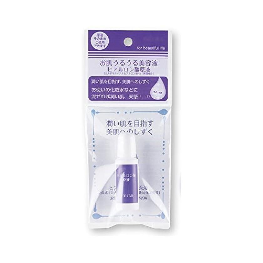 ロビーホラーキャンセル十美LAB 美肌へのしずく お肌うるうる美容液 〈ヒアルロン酸原液〉 (14mL)