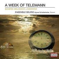 A Week of Telemann - Scherzi Melodichi & Cantatas by Scheibelreiter (2011-09-27)