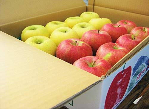 生産農家直送 信州の旬のりんご 訳あり お勧め詰め合わせ 自家用向き 約9〜10kg入り/箱 サンつがる さんさ シナノリップ 秋映 シナノスイートなど