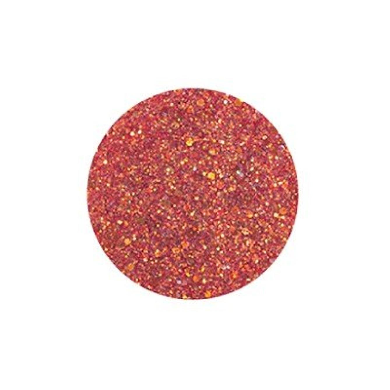 分離顕微鏡レコーダーFANTASY NAIL ダイヤモンドコレクション 3g 4256XS カラーパウダー アート材
