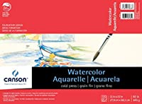 Canson Foundation Series Watercolor Paper Pad for Wet or Dry Media, Fold Over, 90 Pound, 11 x 15 Inch, 15 Sheets [並行輸入品]