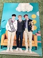 BTS 防弾少年団 ファンミーティング ~Happy Ever After~ ミニLホルダー クリアファイル RM ジミン ジョングク V テヒョン