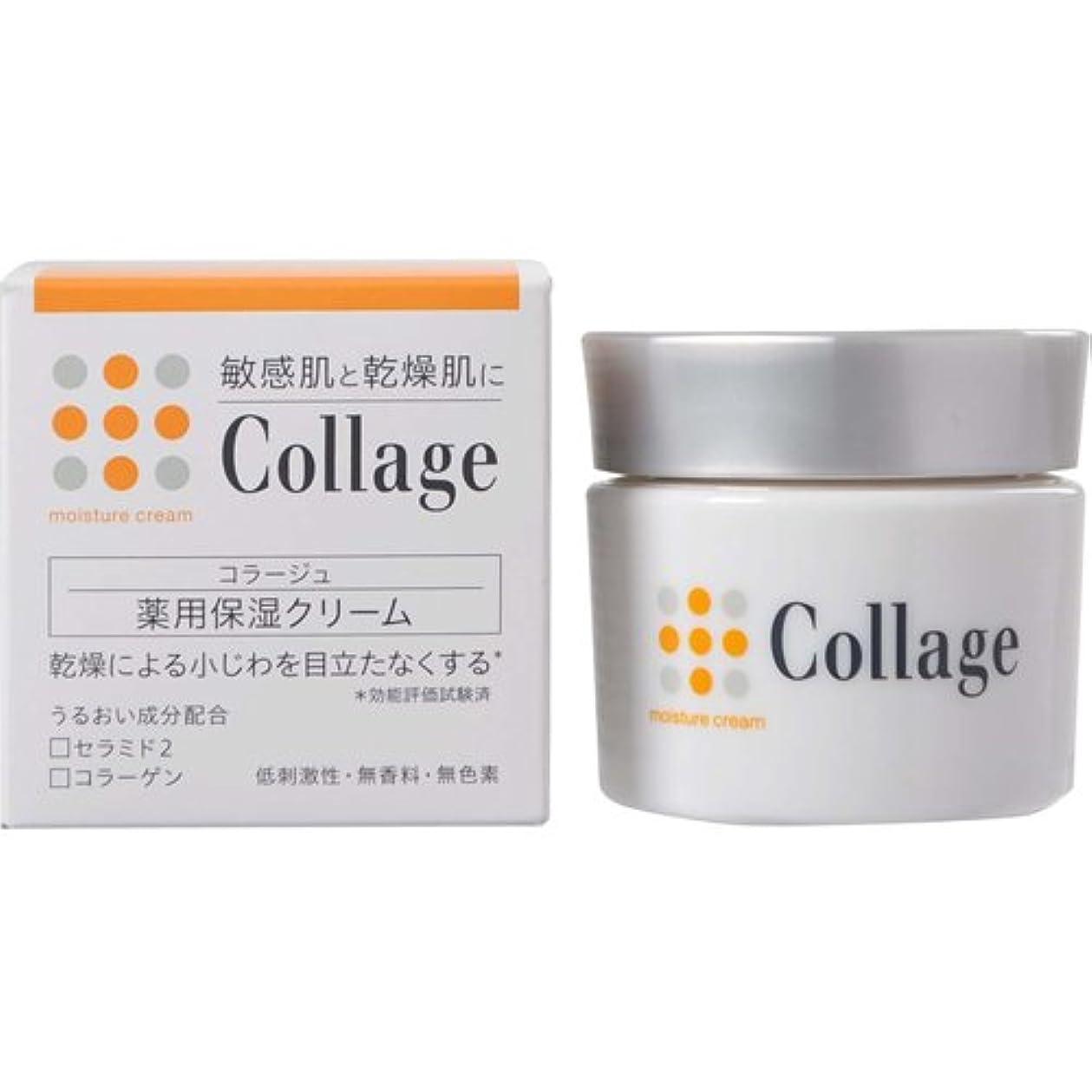 職業貫入貝殻コラージュ 薬用保湿クリーム 30g 【医薬部外品】
